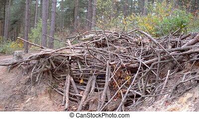 kid building shanty - little boy building a shanty in a...