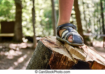 Kid foot stepped on a wooden stump