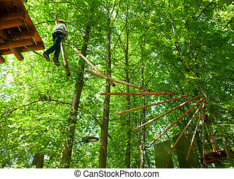 Kid in a treetop adventure park