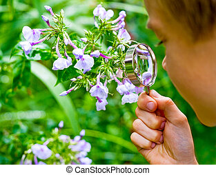 Kid observing flower - Young boy looking at flower through...
