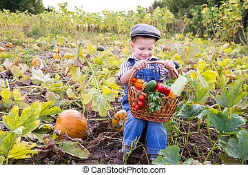 Kid on field with basket of vegetables