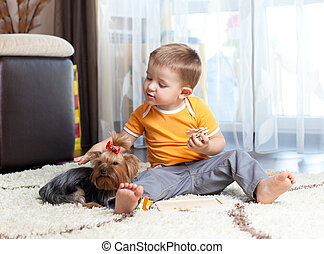 kid playing with puppy indoor