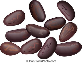 Kidney beans, white, haricot, cacao beans. Red beans, legume, realistic