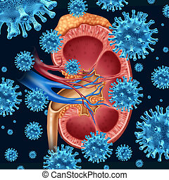 Kidney Infection - Kidney infection concept with a group of...