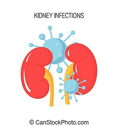 Kidney infection vector concept
