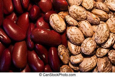 Kidney & Pinto BeansKidney & Pinto Beans - Background of...