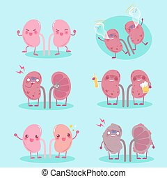kidney with healthy problem