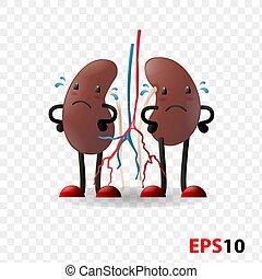 Kidneys. Human internal organ characters - Kidneys. Human ...