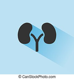 Kidneys icon with shade on blue background