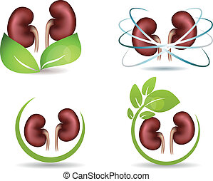 Kidneys protection symbol collection, isolated on white....
