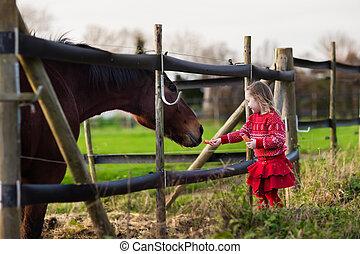kids, вскармливание, лошадь, на, , ферма