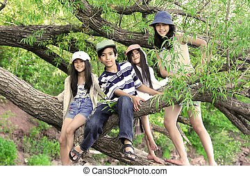 Kids climbing in tree