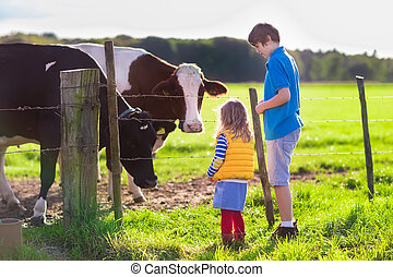 Kids feeding cow on a farm