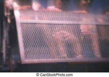 Kids On Carnival Rides (1969) - A brother and his two...