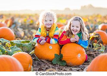 Kids picking pumpkins on Halloween pumpkin patch - Little...