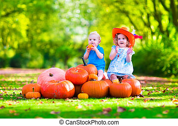 Kids playing at pumpkin patch