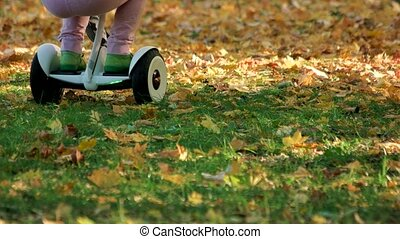 Kids playing on grass with gyroscooter. Close up. Fallen...