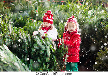 Kids select Christmas tree. Family buying Xmas tree. -...
