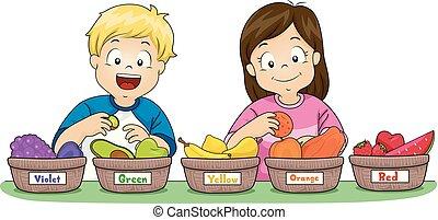 Kids Sort Fruits Basket Color Illustration
