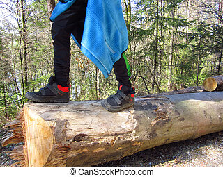 Kids walking on tree trunks