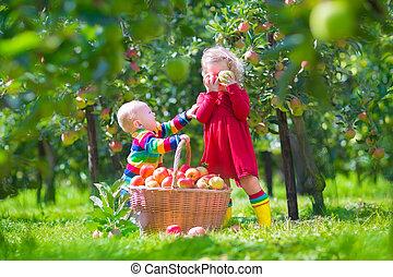 Kids with apple basket - Happy little children, toddler girl...