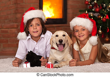 Kids with their pets at christmas time