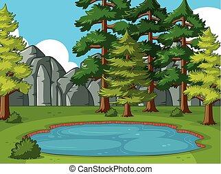 kiefer, teich, ungefähr, bäume, szene