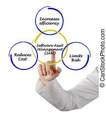 kierownictwo, cenny nabytek, software