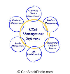 kierownictwo, crm, software