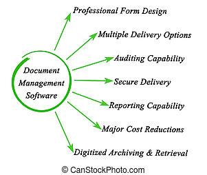 kierownictwo, dokument, software