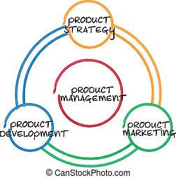kierownictwo, produkt, diagram, handlowy