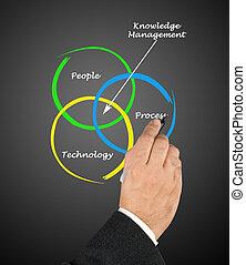 kierownictwo, wiedza