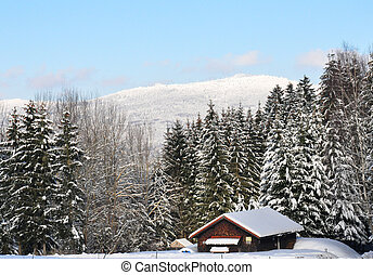 Kiesruck in winter