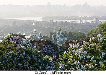 Kiev is the capital of Ukraine