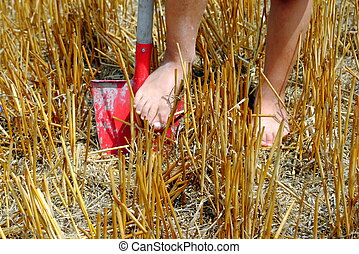 kif feet over a shovel in the field