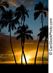 Kihei Sunset - A perfect November sunset at Kihei, Maui.