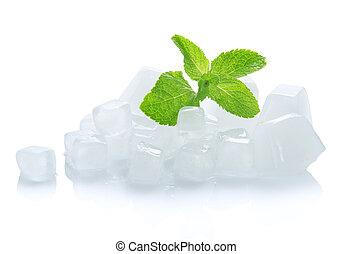 kikövez, zöld, fiatal, jég, zöld, mentol