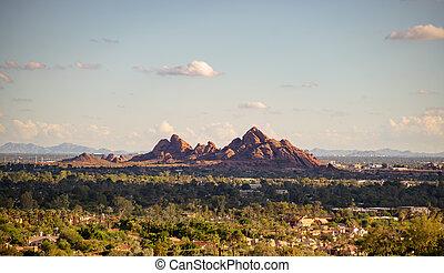 kilátás, közül, papago, liget, főnix madár, és, tempe, alapján, camelback, hegy, alatt, arizona, usa