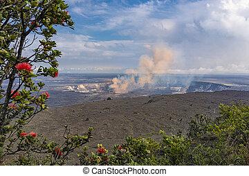 Kilauea Caldera Volcano on the Big Island Hawaii