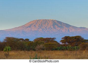 kilimanjaro mountain at the sunrise