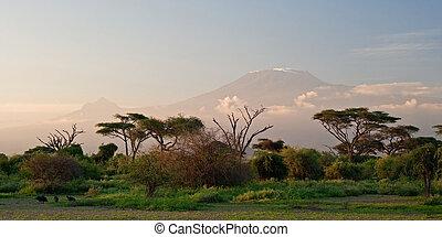 kilimanjaro, v, východ slunce