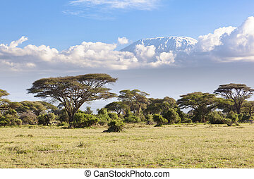 Kilimanjaro with snow cap seen from Amboseli National Park in Kenya.