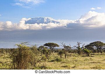 Kilimanjaro with snow cap