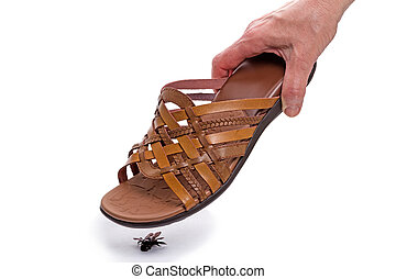 Kill a fly shoes - Hand with sandals kill a fly isolated on...
