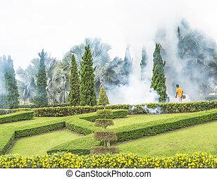 kill the Aedes mosquito - man Fogging insecticide to kill...