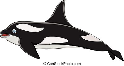 Killer Whale cartoon - full color