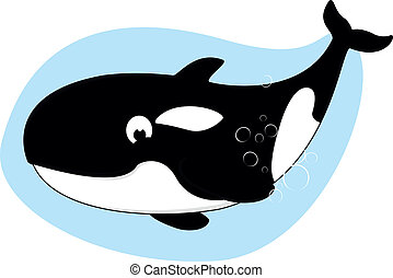 Killer Whale - Vector Illustration Of Killer Whale