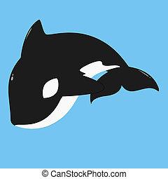 Killer Whale, Orca Vector