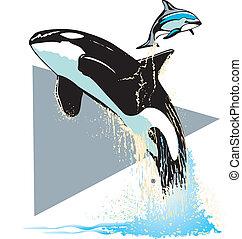 Sea Aquarium Whale