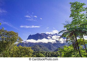 Kinabalu Mountian - Kota Kinabalu (Mount Kinabalu), Borneo...